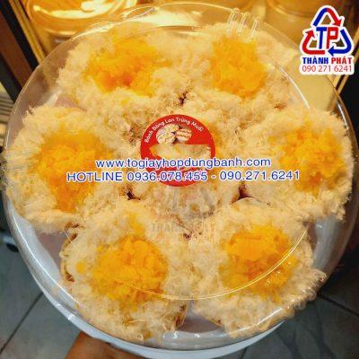 Hộp H47 thấp - Hộp H47 20cm - Hộp đựng bánh bông lan trứng muối 20cm - Hộp đựng bánh 20cm